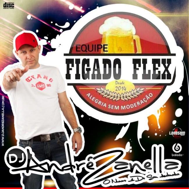 FIGADO FLEX 2 - DJ ANDRE ZANELLA